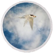 Tern In Flight With Fish Round Beach Towel