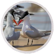 Terns Head2head Round Beach Towel