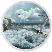 Terns In The Surf Round Beach Towel