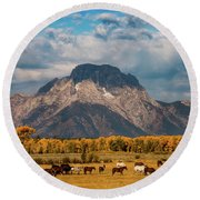 Round Beach Towel featuring the photograph Teton Horse Ranch by Darren White