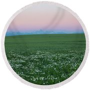 Tetons With Daisies Round Beach Towel