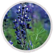 Round Beach Towel featuring the mixed media Texas Bluebonnet State Flower by Daniel Hagerman