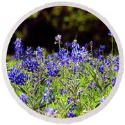 Texas Bluebonnets IIi Round Beach Towel by Greg Reed
