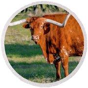 Texas Hill Country Longhorn 9962a Round Beach Towel