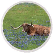 Texas Longhorn And Bluebonnets Round Beach Towel