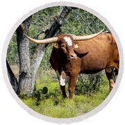 Round Beach Towel featuring the photograph Texas Longhorn Steer by David Morefield