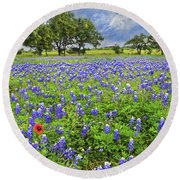 Texas Spring  Round Beach Towel by Lynn Bauer