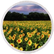 Texas Sunflowers Round Beach Towel
