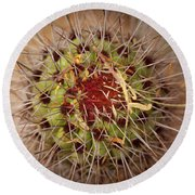 Textures Of Arizona Round Beach Towel