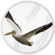 Round Beach Towel featuring the photograph The Amazing American White Pelican by Ricky L Jones
