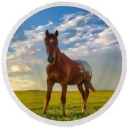 The Appy Round Beach Towel
