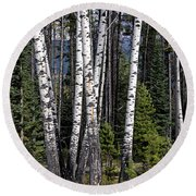 Round Beach Towel featuring the photograph The Aspens by John Gilbert