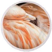 The Beautiful Flamingo Round Beach Towel