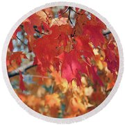 The Beauty Of Fall's Leaves Round Beach Towel