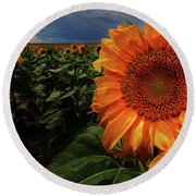 The Belle Of The Ball Round Beach Towel