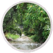 Round Beach Towel featuring the photograph The Big Ditch Of Silver City Has A Story by Natalie Ortiz
