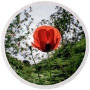 The Big Red 02 Round Beach Towel