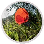 The Big Red Round Beach Towel