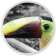 The Big Toucan Round Beach Towel