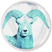 Round Beach Towel featuring the photograph The Blue Ram by Jennie Marie Schell