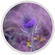 The Blue Softness Of A Teasel Round Beach Towel by Michelle Meenawong
