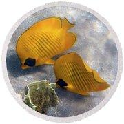 The Bluecheeked Butterflyfish Round Beach Towel