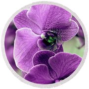 The Branch Of Orchids Round Beach Towel