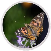 Round Beach Towel featuring the photograph The Butterfly Effect by Alex Lapidus