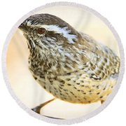 The Cactus Wren  Round Beach Towel