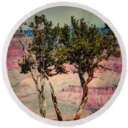 Round Beach Towel featuring the photograph The Canyon Tree by Tom Prendergast