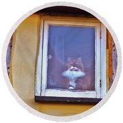 The Cat In The Window Round Beach Towel
