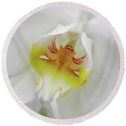 The Cat Side Of An Orchid Round Beach Towel