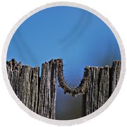 Round Beach Towel featuring the photograph The Caterpillar by Cendrine Marrouat