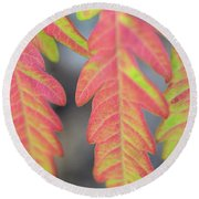 The Colors Of Shumac 8 Round Beach Towel