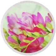 Round Beach Towel featuring the photograph Colour Full Freesia by Connie Handscomb