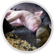 Round Beach Towel featuring the photograph The Comfort Of Mom by Robert Geary