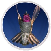 Round Beach Towel featuring the photograph The Conductor Of Hummer Air Orchestra by William Lee