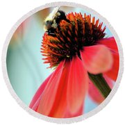 The Coneflower Collection 2 Round Beach Towel