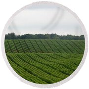 Round Beach Towel featuring the photograph The Corn Belt by John Glass