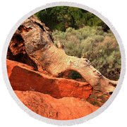 The Creature At Red Cliffs Round Beach Towel