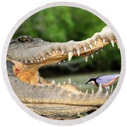 The Crocodile Bird Round Beach Towel