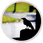 Round Beach Towel featuring the photograph The Crow Awaits by Karol Livote