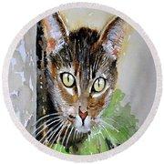 The Curious Tabby Cat Round Beach Towel
