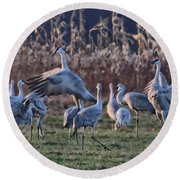 Round Beach Towel featuring the photograph The Dance by Shari Jardina