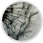 Round Beach Towel featuring the digital art The Dandelion Silhouette by Steve Taylor