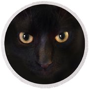 Round Beach Towel featuring the photograph The Dark Cat by Gina Dsgn