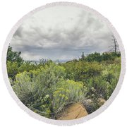 Round Beach Towel featuring the photograph The Desert Comes Alive by Margaret Pitcher