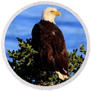 The Eagle Has Landed 2 Round Beach Towel