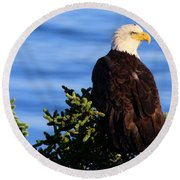 The Eagle Has Landed Round Beach Towel