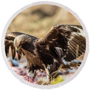 Round Beach Towel featuring the photograph The Eagle Have Come Down by Torbjorn Swenelius
